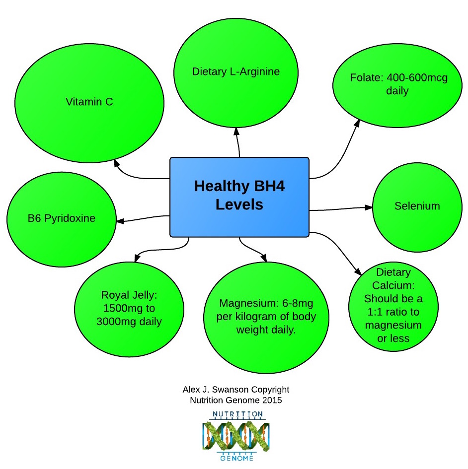 Healthy BH4 flow chart - New Page-5