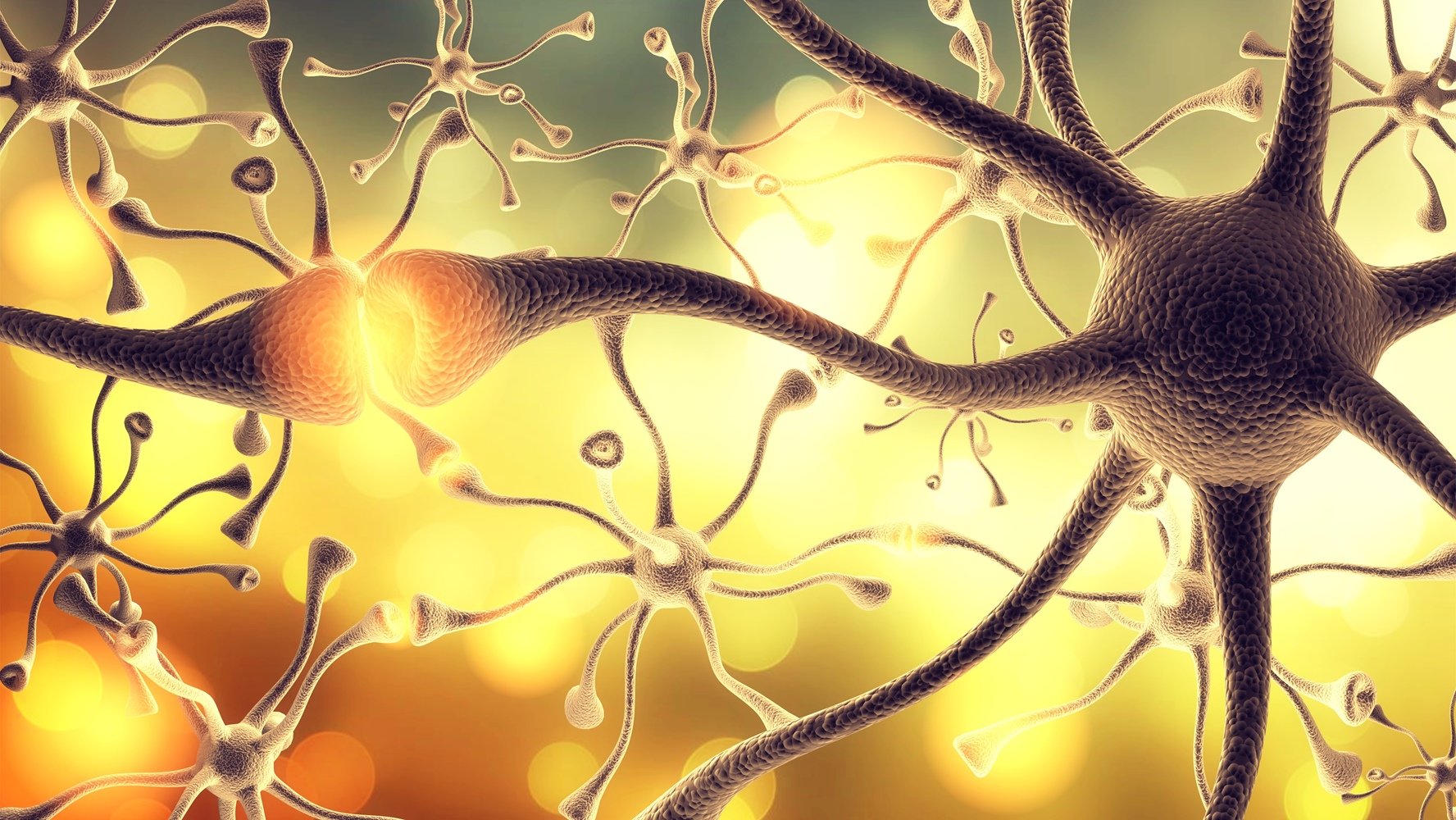 Understanding Neurotransmitters and Your Mental Health