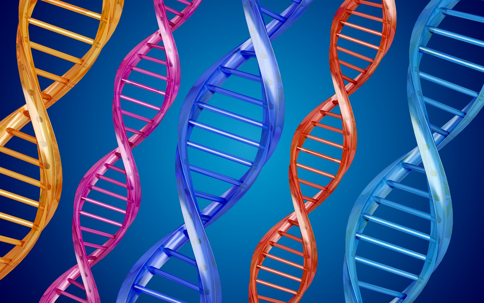 What is the Methylation Cycle?