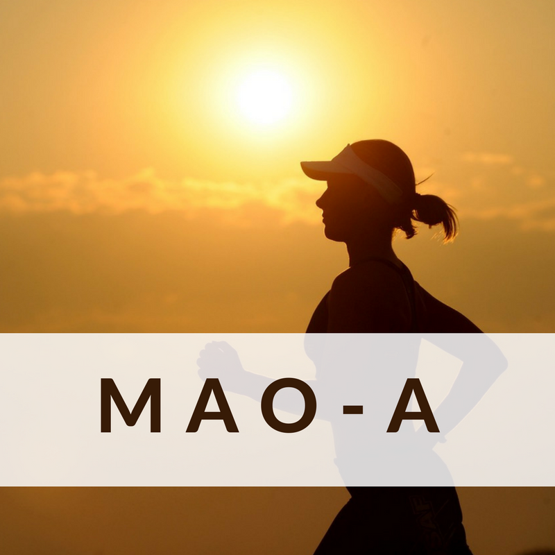What is MAO-A? DNA-Based Nutrition