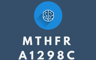 What is MTHFR A1298C?