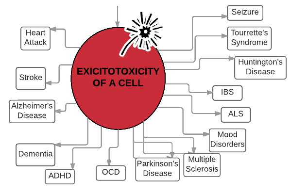 The Neurotoxic Pathway of Glutamate