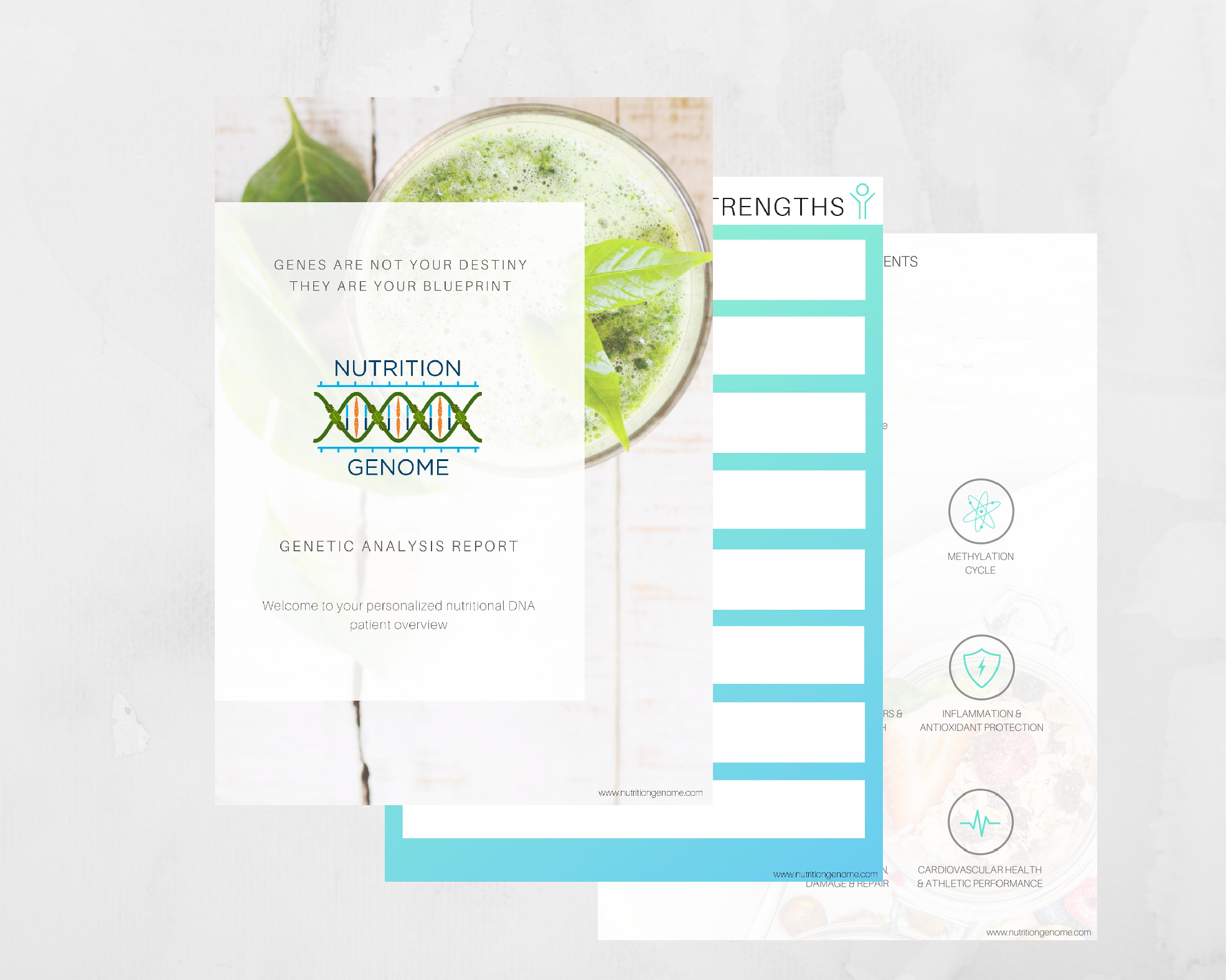 Topic 4: Navigating the Nutrition Genome Report