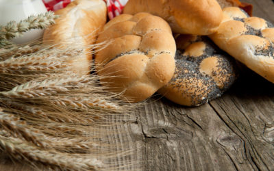 Can the Rise in Gluten Intolerance be Explained by Genetics or the Microbiome?